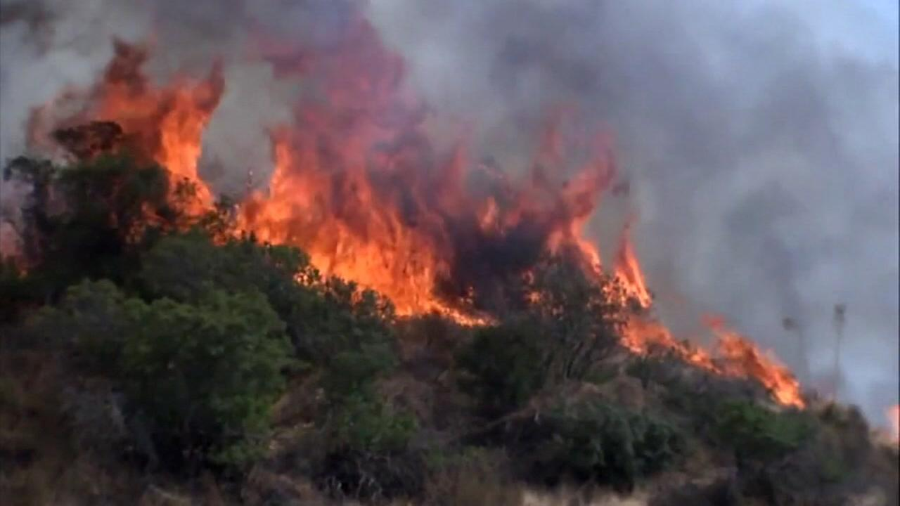Massive brush fire burns near freeway in SoCal