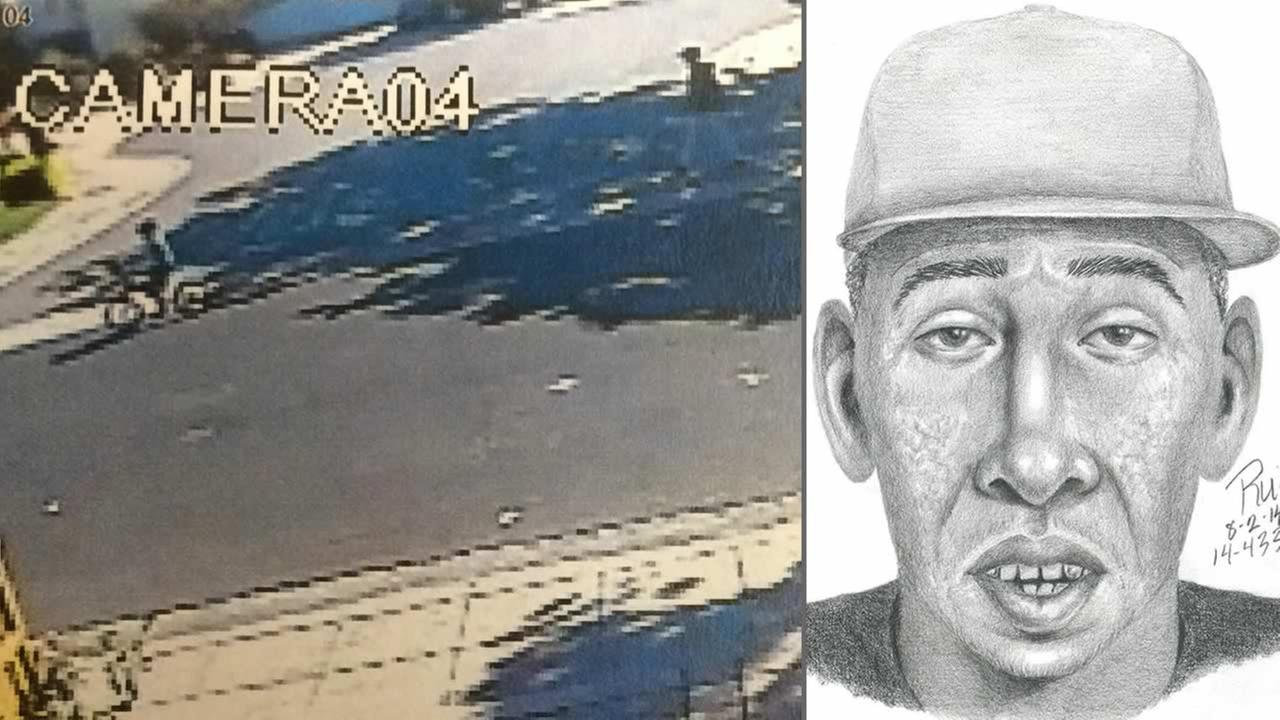 Police release surveillance video image and a sketch of a man who exposed his genitals in  a Palo Alto park where children were playing.