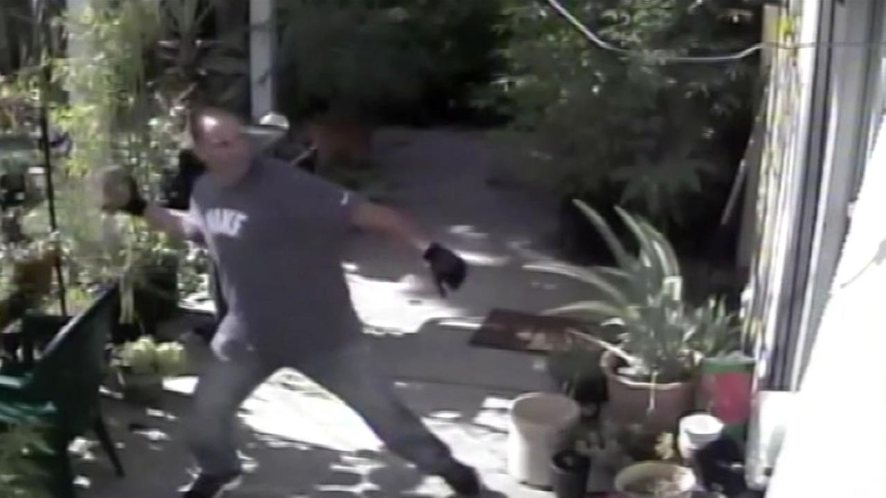 Surveillance video is providing many clues to a brazen burglary in San Jose.