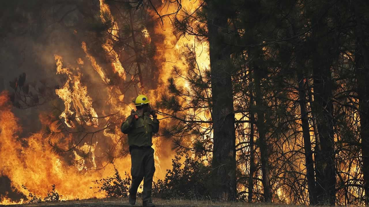 A firefighter A.J. Tevis watches the flames of the Rim Fire near Yosemite National Park, Calif.