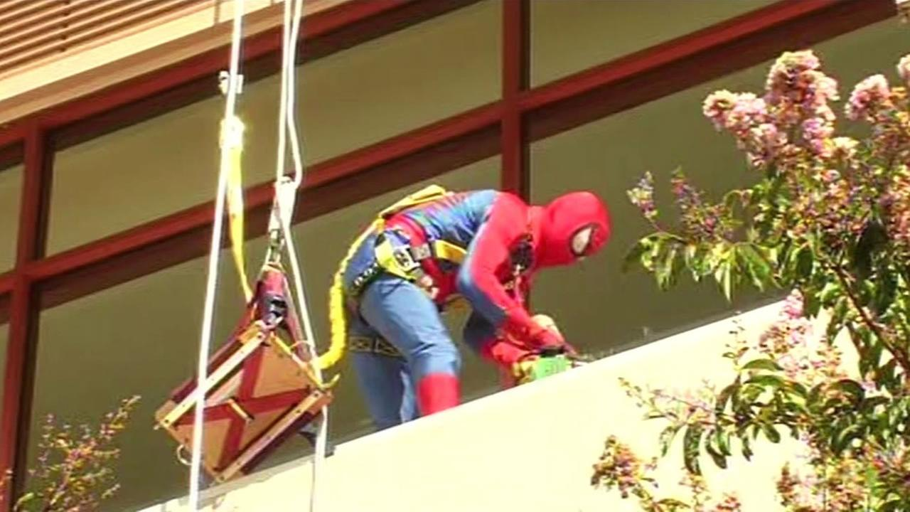 window washer dressed up as spiderman to cheer up kids at hospital in santa clara
