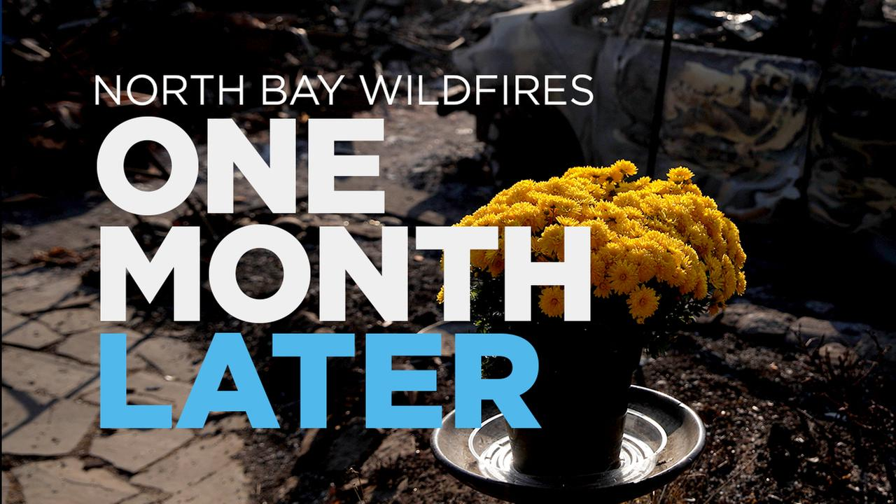 The North Bay Wildfires: One Month Later