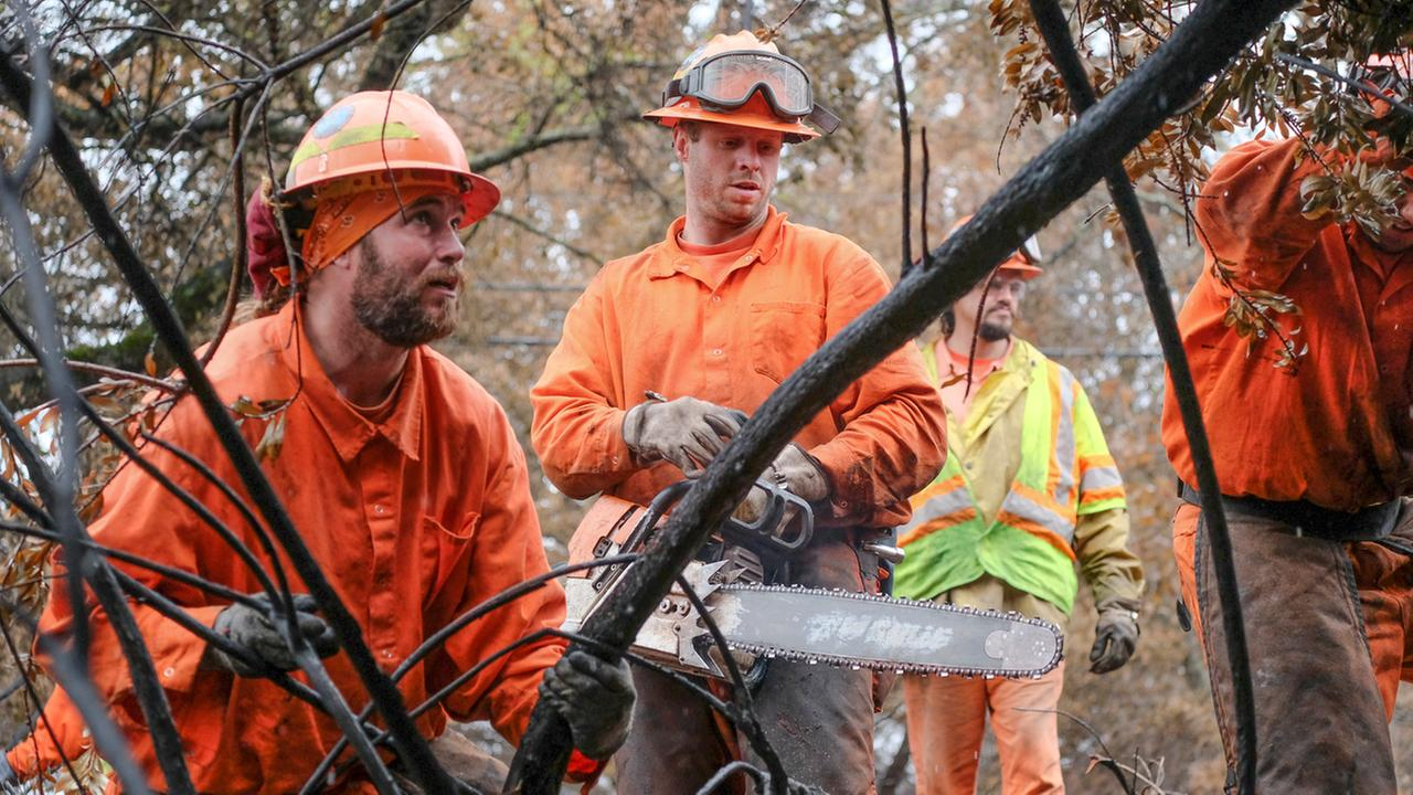 Inmate firefighters are seen in a burn zone in Sonoma County, Calif. on Thursday, November 16, 2017.