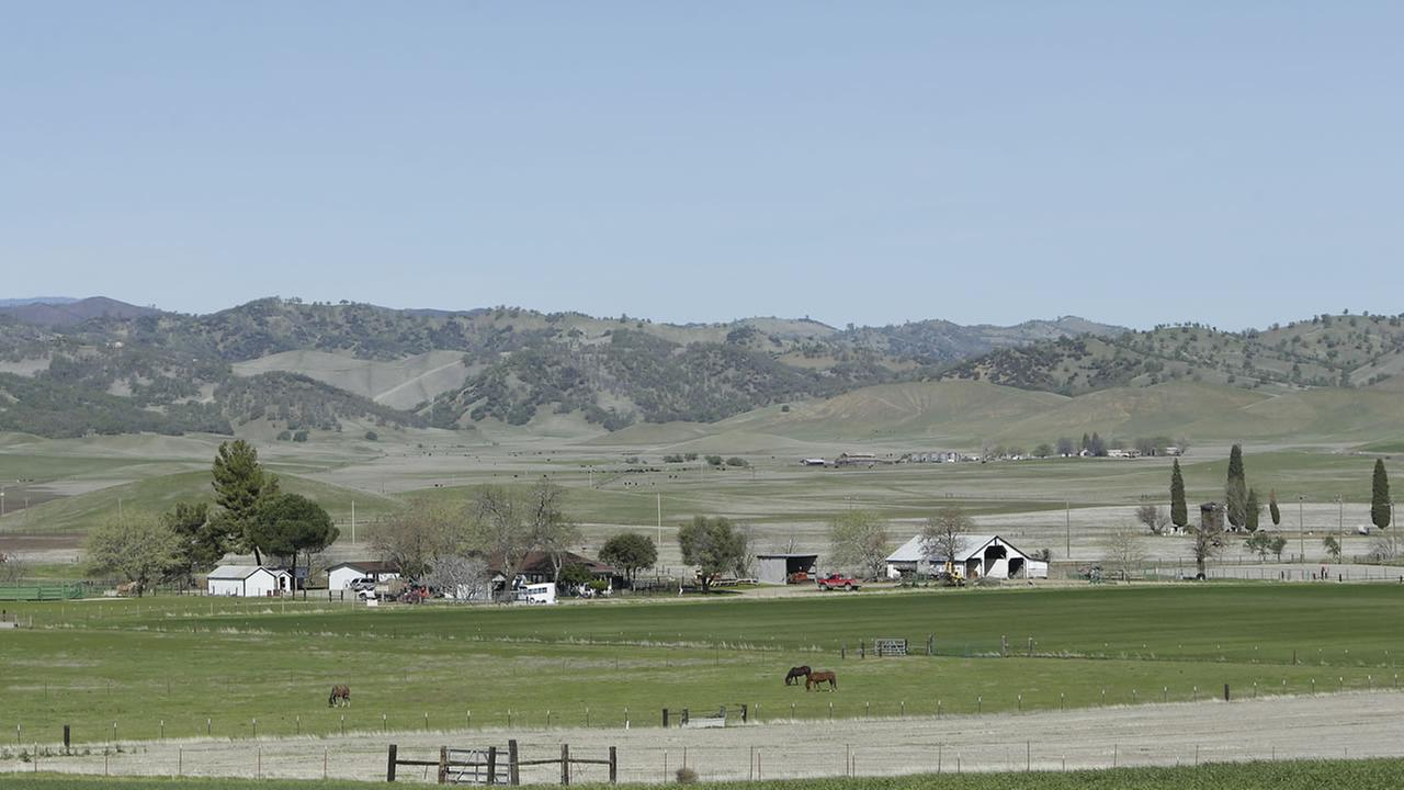 hows horses grazing in the Sites Valley, the location of a proposed reservoir, near Maxwell, Calif.