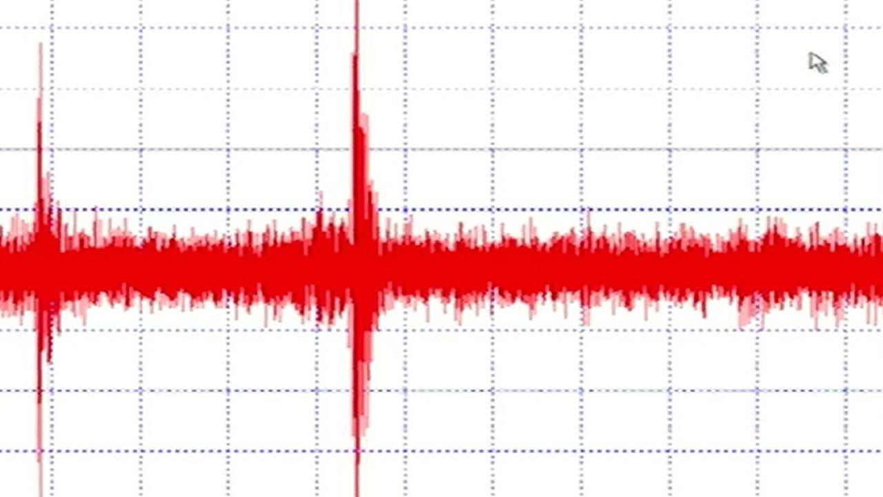 UC Berkeley scientists say an early warning system gave a 10 second warning before the 6.0 magnitude earthquake centered in American Canyon hit.
