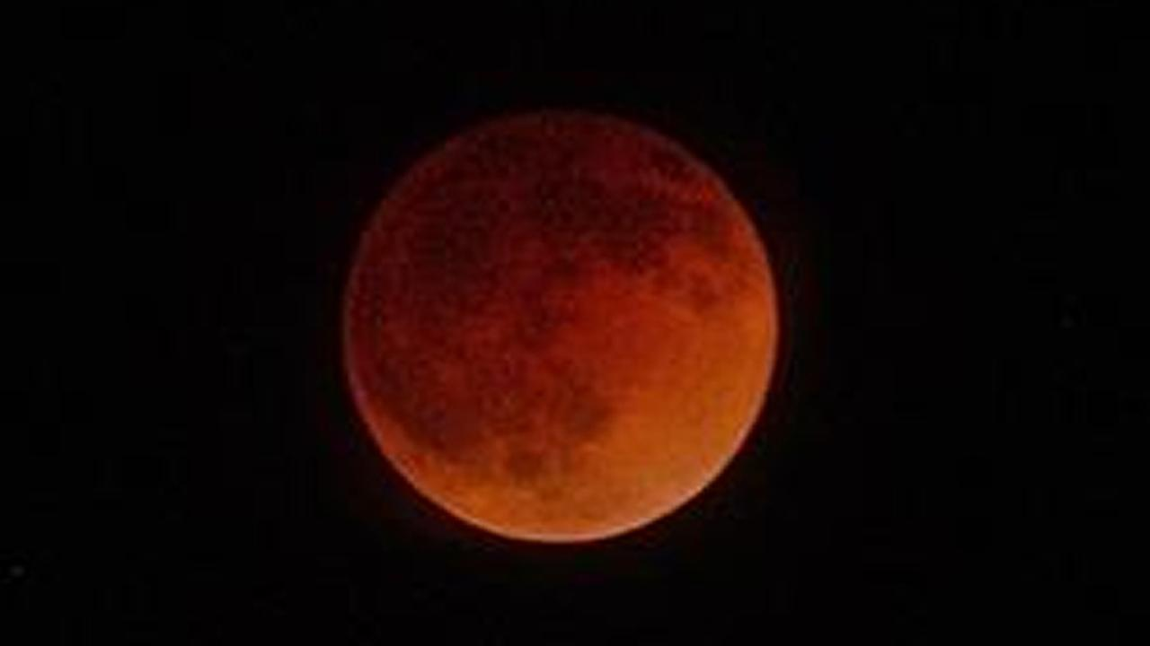 Here are some photos of the blood moon taken by stargazers throughout the Bay Area. Send your pics to uReport@kgo-tv.com!