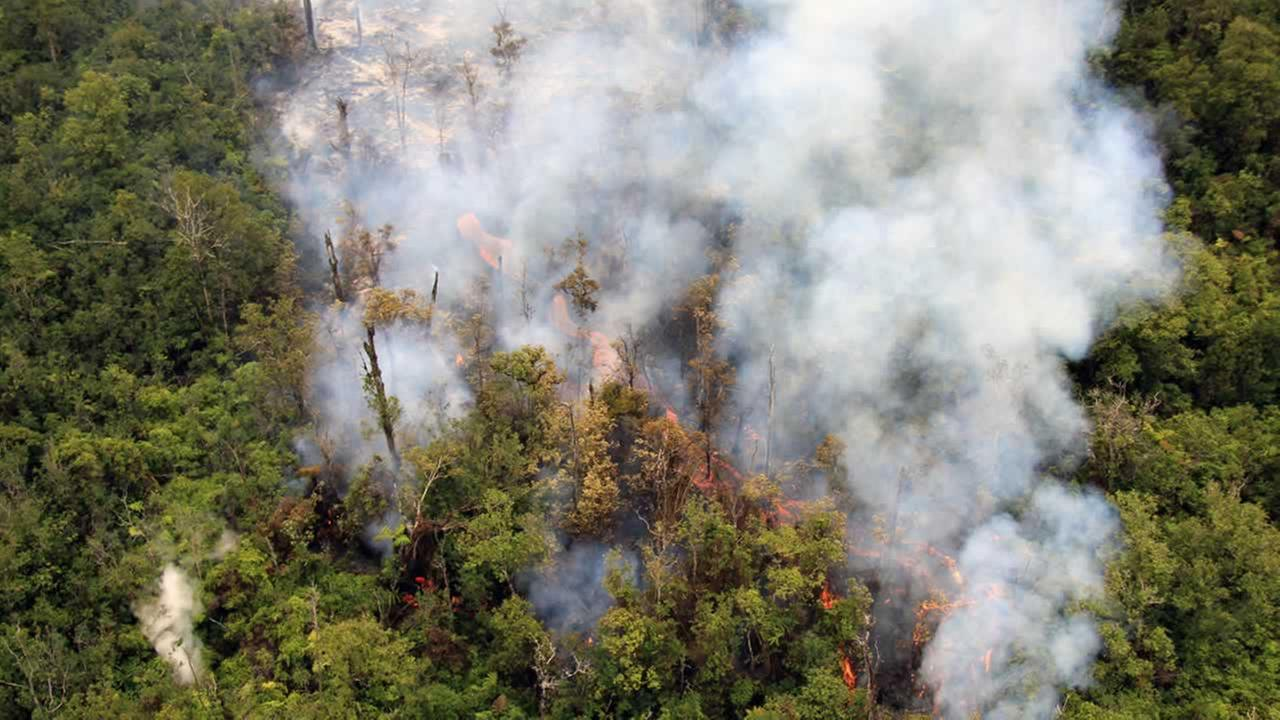 In this Sept. 3, 2014 photo released by the U.S. Geological Survey, fluid lava streams from the June 27 lava flow from the Kilauea volcano in Pahoa, Hawaii. (AP Photo/U.S. Geological Survey)