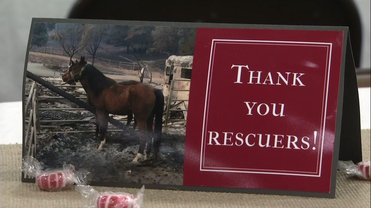 A card thanks animal rescuers who risked their lives during the North Bay fires in Petaluma, Calif. on Wednesday, Jan. 31, 2018.