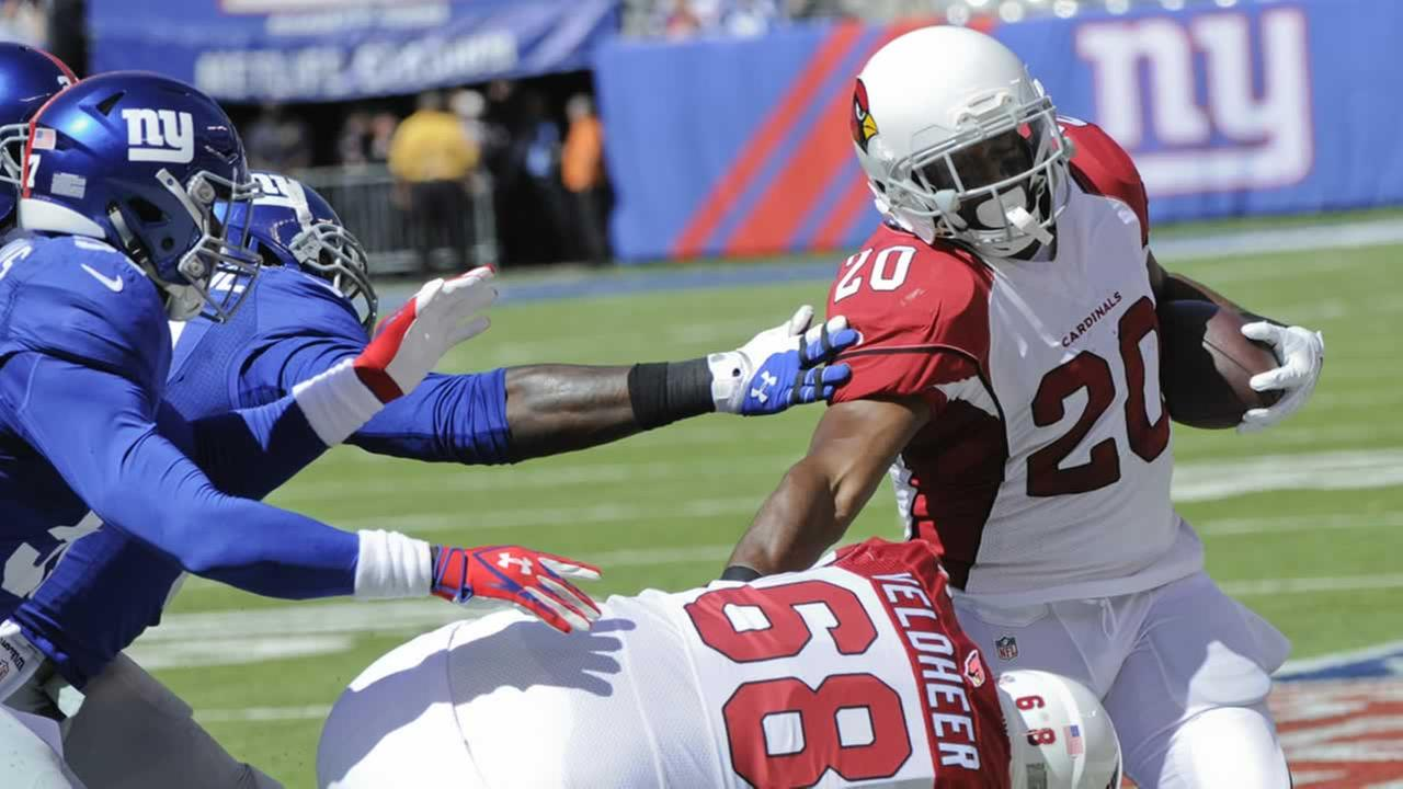 Arizona Cardinals Running Back Jonathan Dwyer, #20, has been arrested on domestic violence charges.