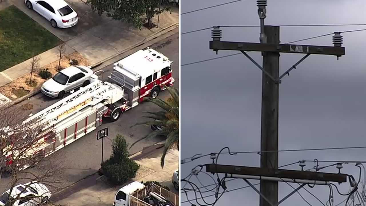 A freak accident involving a high tension power line caused the death of a tree trimmer in San Jose, Calif. on Monday, Feb. 26, 2018.