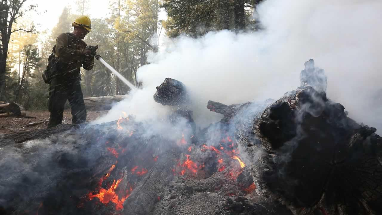 Cameron Andersen pours water on burning embers at King Fire