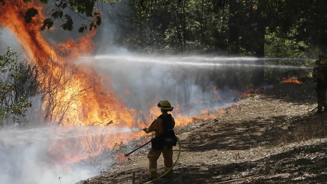 Firefighters hold the line with water hoses during a controlled burn while fighting the King Fire on Tuesday, Sept. 23, 2014, in Mosquito, Calif. (AP Photo/Marcio Jose Sanchez)