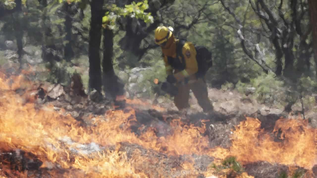 A firefighters sets a controlled burn with a drip torch while fighting the King Fire on Tuesday, Sept. 23, 2014, in Mosquito, Calif.