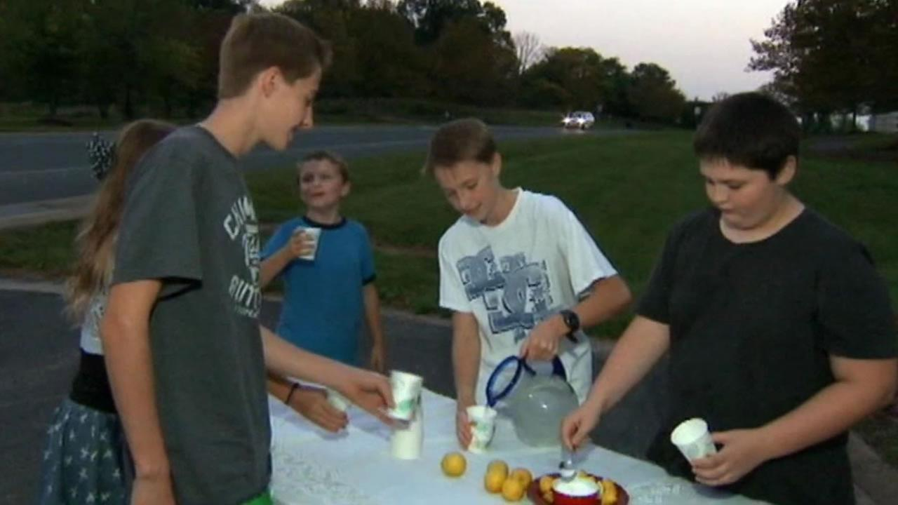 Two 13-year-old boys who were running a lemonade stand to raise money for a puppy were robbed.