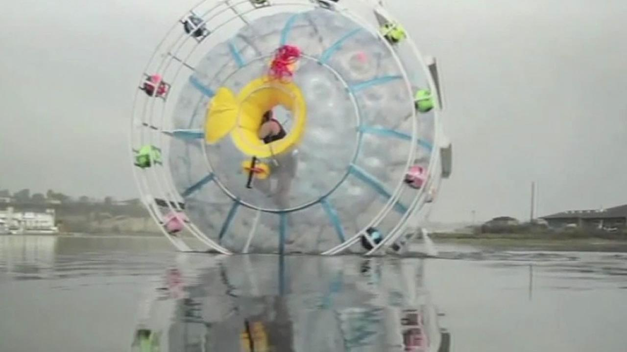 Reza Baluchi attempts to walk on water in an inflatable bubble from Florida to Bermuda.