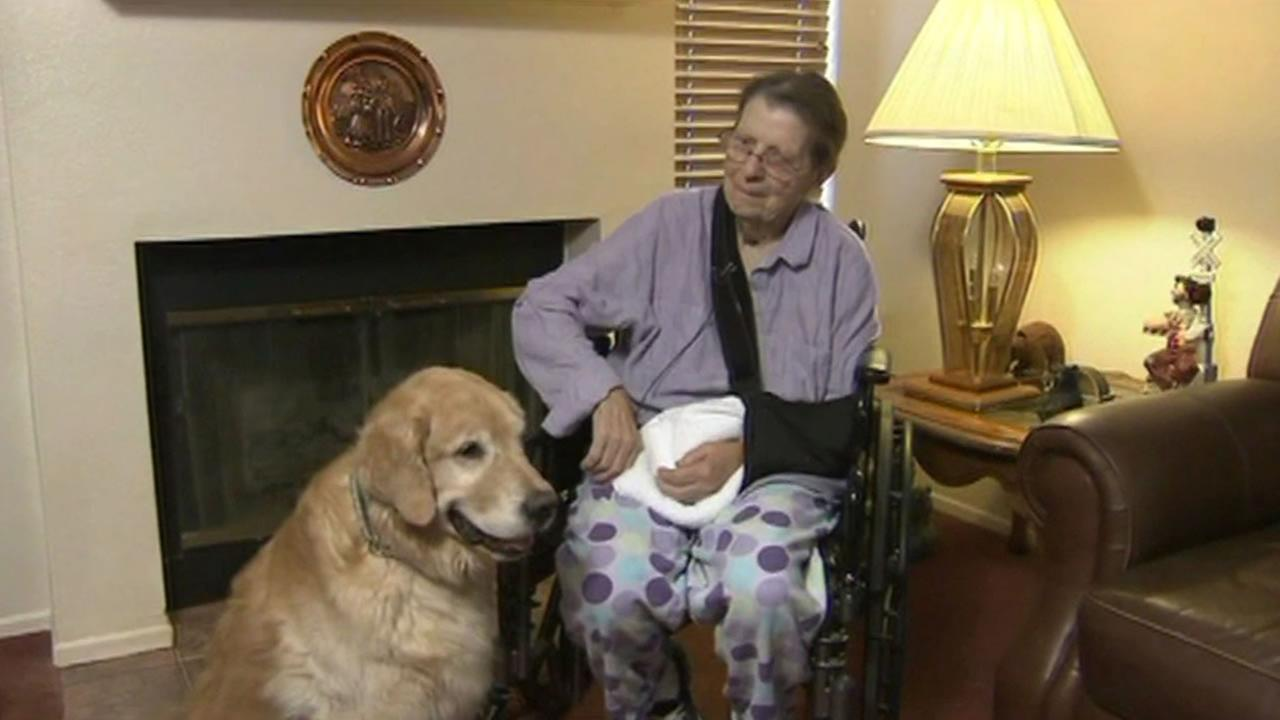 Dog credited with saving owners life.