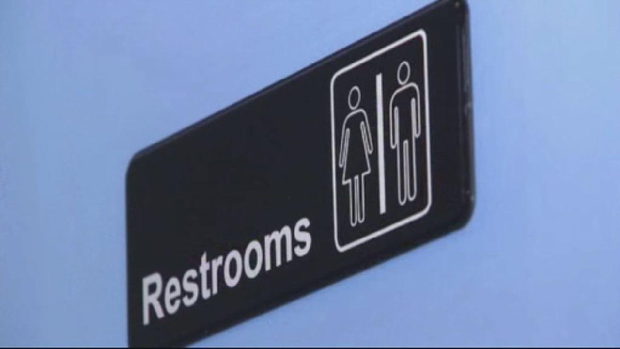 This undated image shows a gender-neutral bathroom.