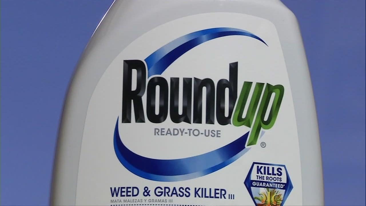 A bottle of Roundup weed killer is seen in this undated image.