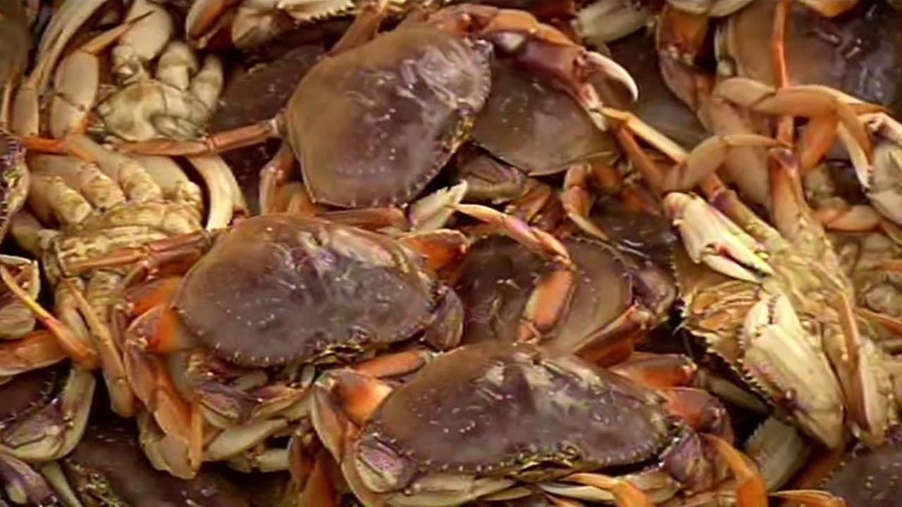 Dungeness crab caught in San Francisco.