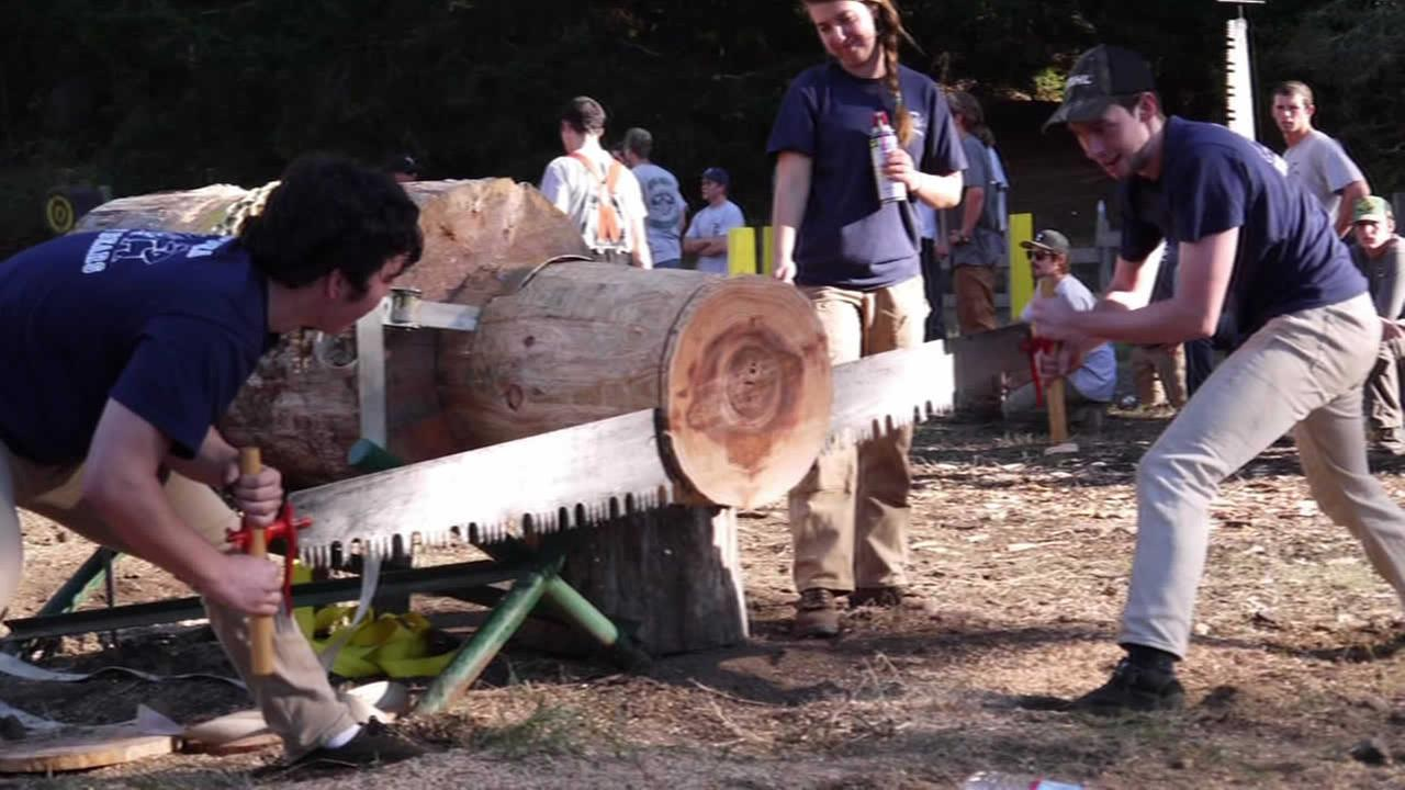 UC Berkeleys logging team at a recent competition.