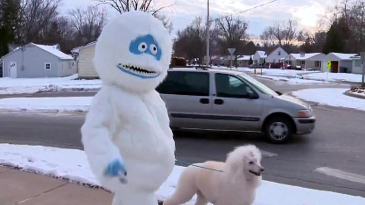 A woman who walks her dog while dressed as an abominable snowwoman has been attracting a lot of attention in a suburb of Green Bay.
