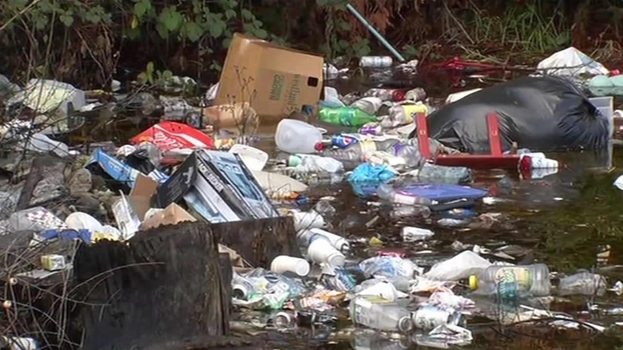 Rain has turned a large pile of trash dumped on a private lot behind an apartment complex in Oakland into a pond of garbage, Wednesday, Dec. 17, 2014.