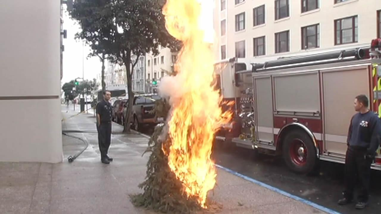 San Francisco firefighters lit a Christmas tree on fire as part of a safety demonstration on Wednesday, Dec. 17, 2014.