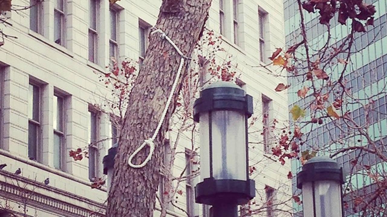 noose found on a tree in Frank Ogawa Plaza