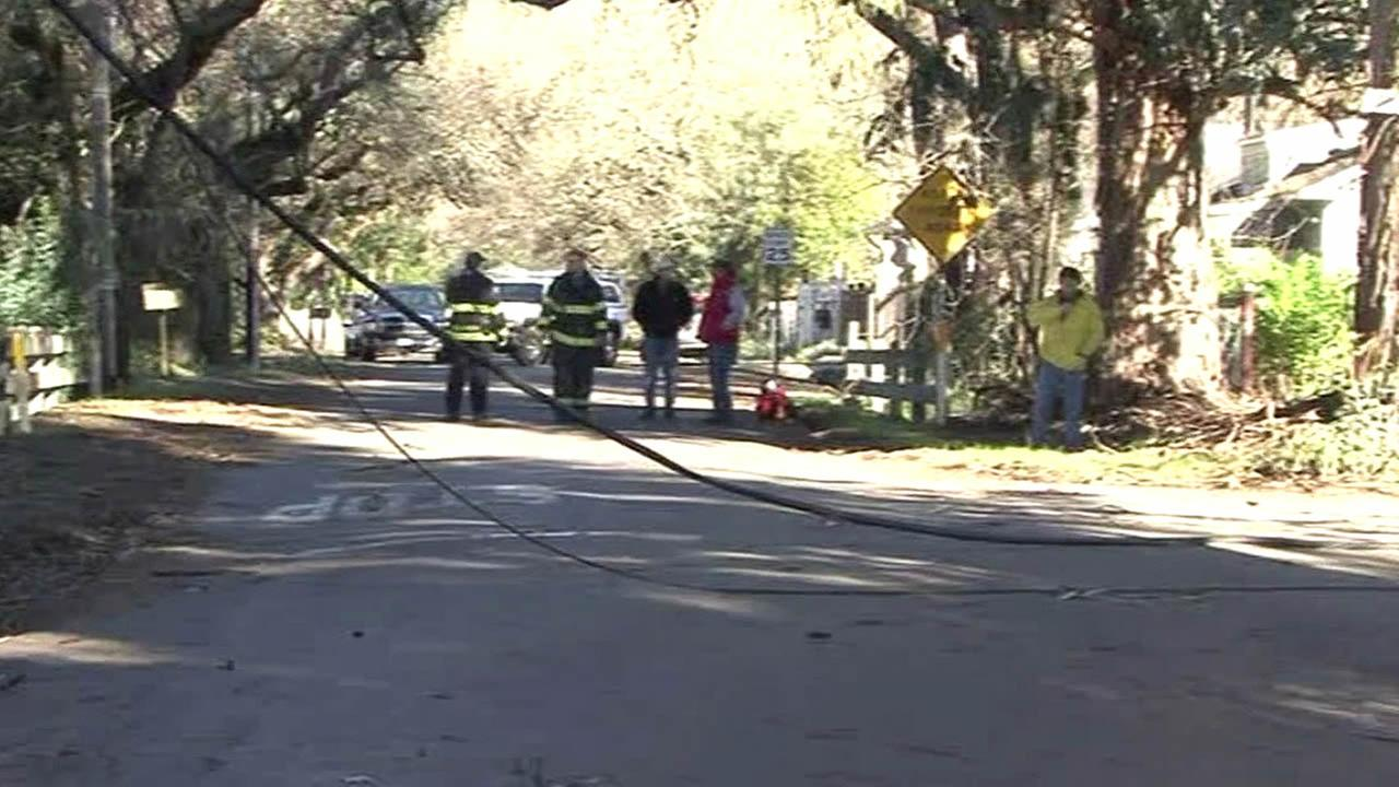 powerlines down in a Bay Area neighborhood