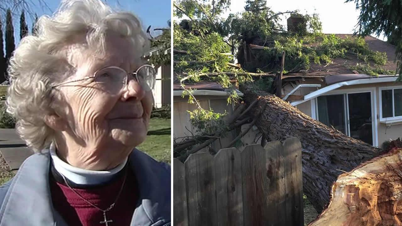 A wind storm sent a coastal redwood crashing down onto Luana Larsons home on Vintage Street in Napa on Tuesday, Dec. 30, 2014.