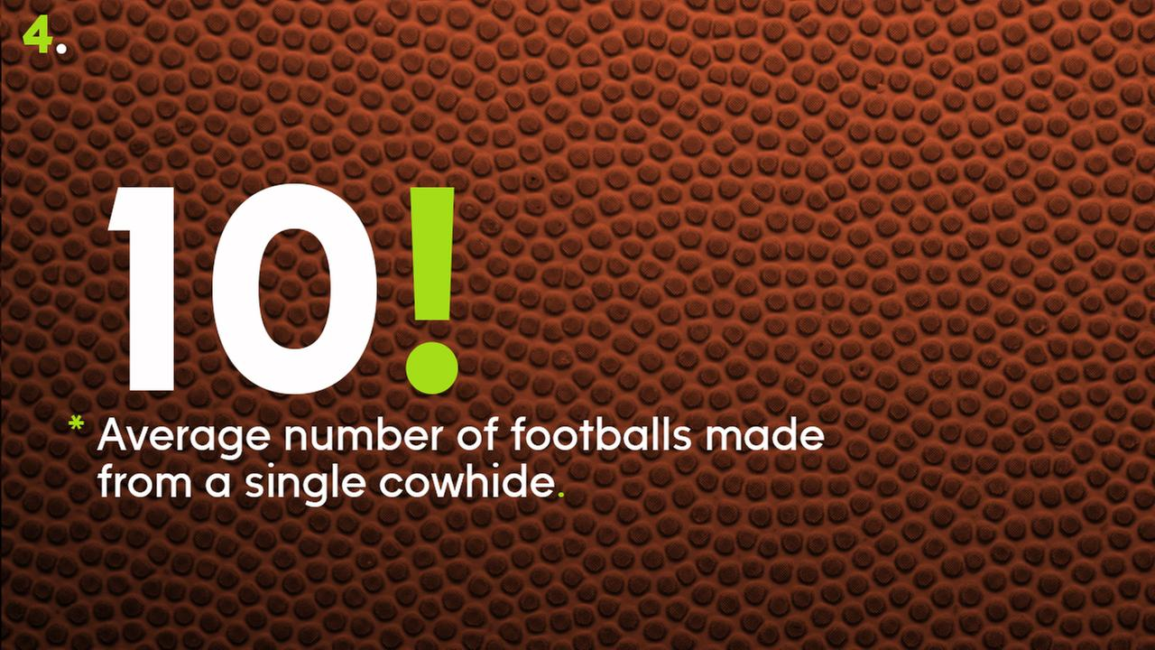 10 -- Average number of footballs made from a single cowhide.