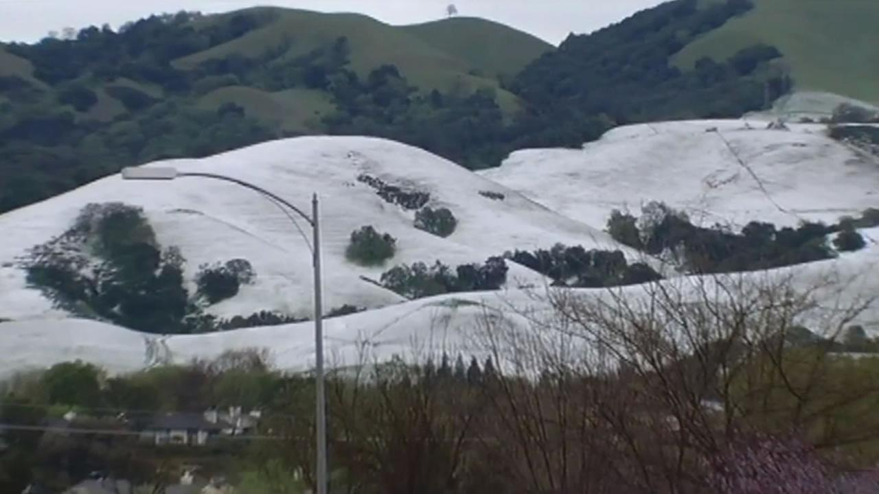Hail in the hills of San Jose.