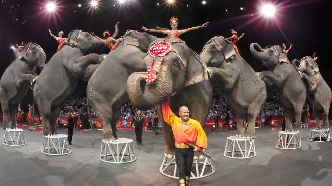 The Greatest Show on Earth was under enormous pressure from the public and cities to stop mistreating its elephants, something Ringling Brothers has denied.