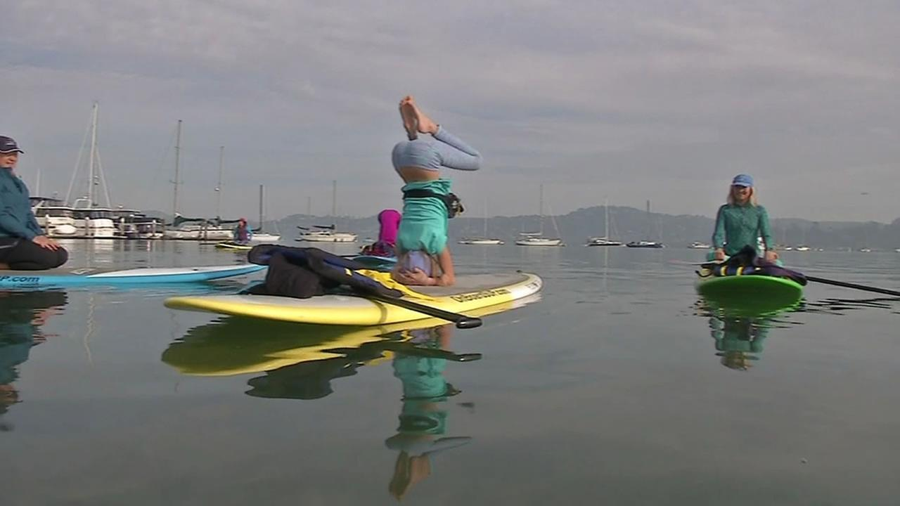 woman doing p[addle board yoga