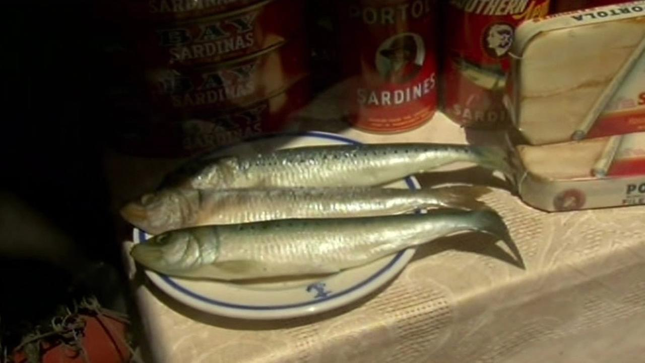 Cans and a plate of sardines are seen in Monterey, Calif. on April 16, 2015.