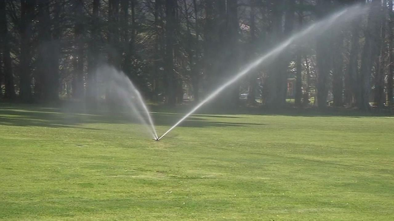 sprinklers at golf course