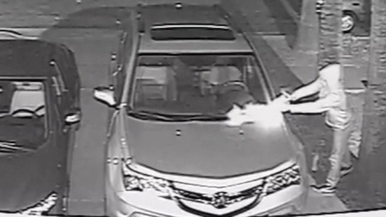 Surveillance video captures car being lit on fire in San Jose.