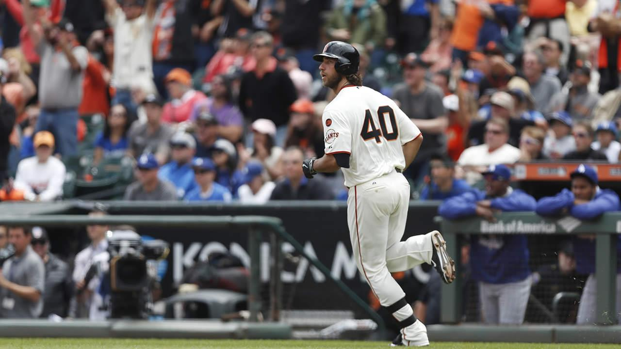 San Francisco Giants pitcher Madison Bumgarner watches his home run ball during a baseball game against the Los Angeles Dodgers, , May 21, 2015, in San Francisco. (AP Photo/Beck Diefenbach)