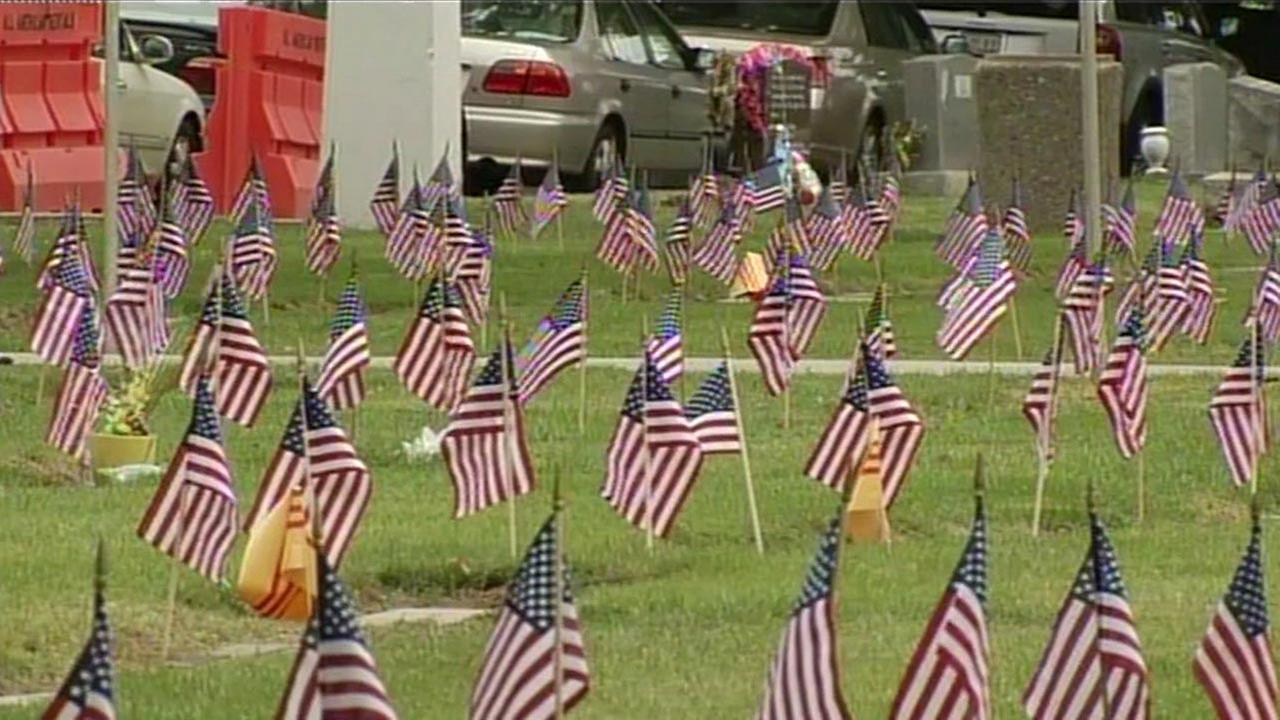 American flags at cemetery