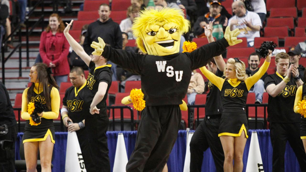 No matter how far these NCAA teams go, at least their mascots have good stories.