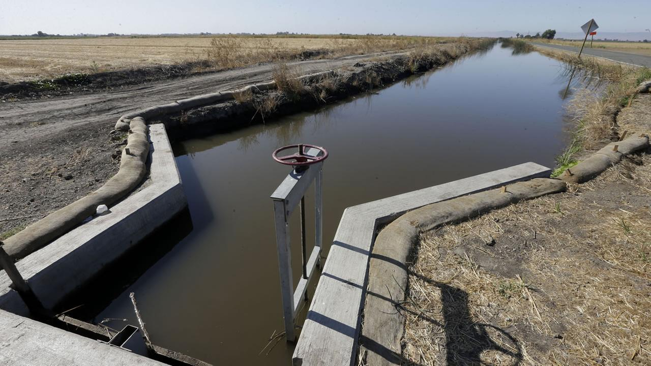 In this photo taken July 15, 2015, water flows down a canal near Byron, Calif.