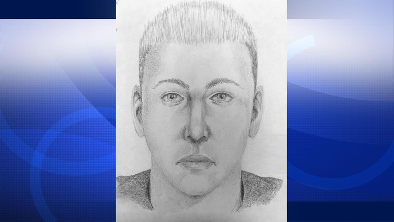 Palo Alto police have released a sketch of an attempted robbery suspect who allegedly tried to rob a Palo Alto family, August 2, 2015.