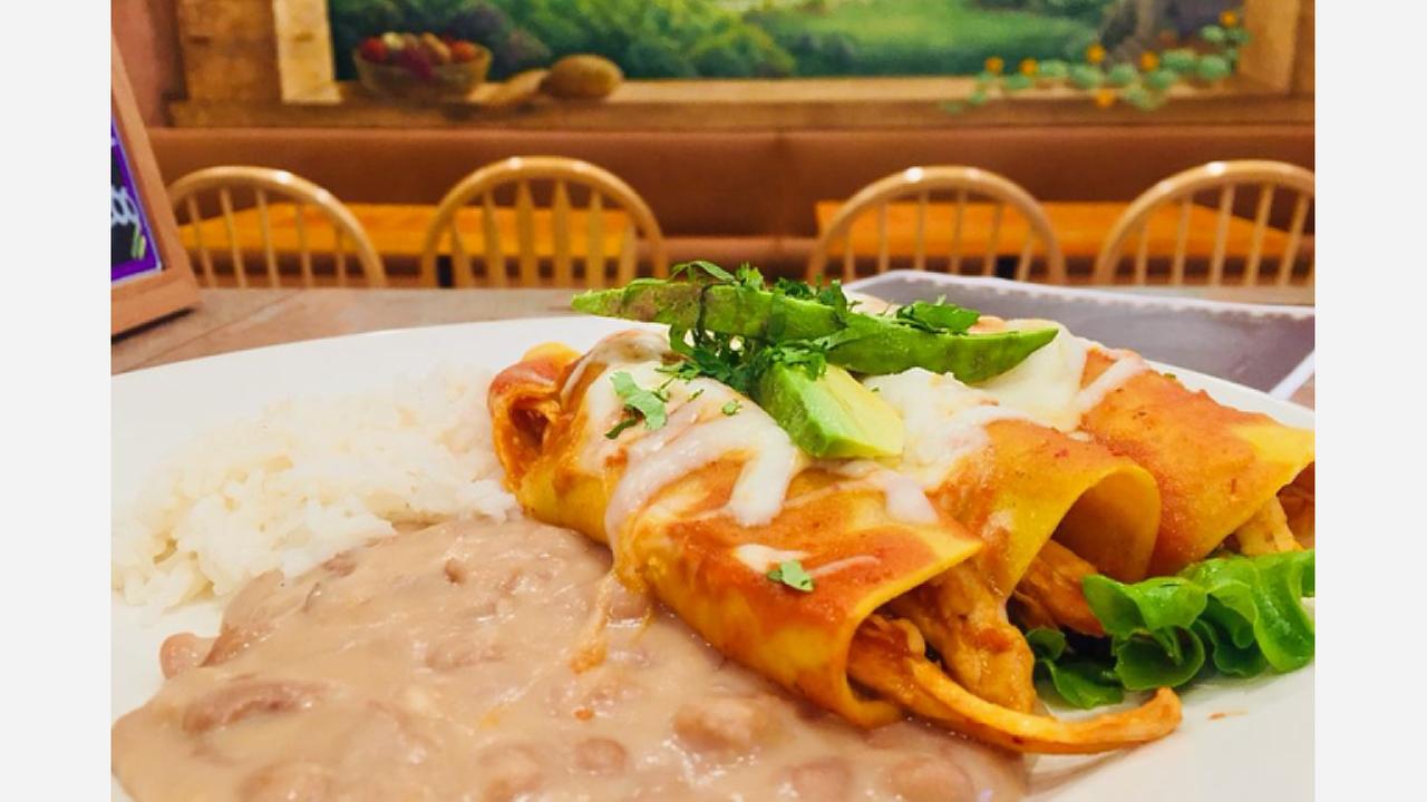 Chicken enchiladas.   Photo: Mayas Restaurant Cafe/Yelp