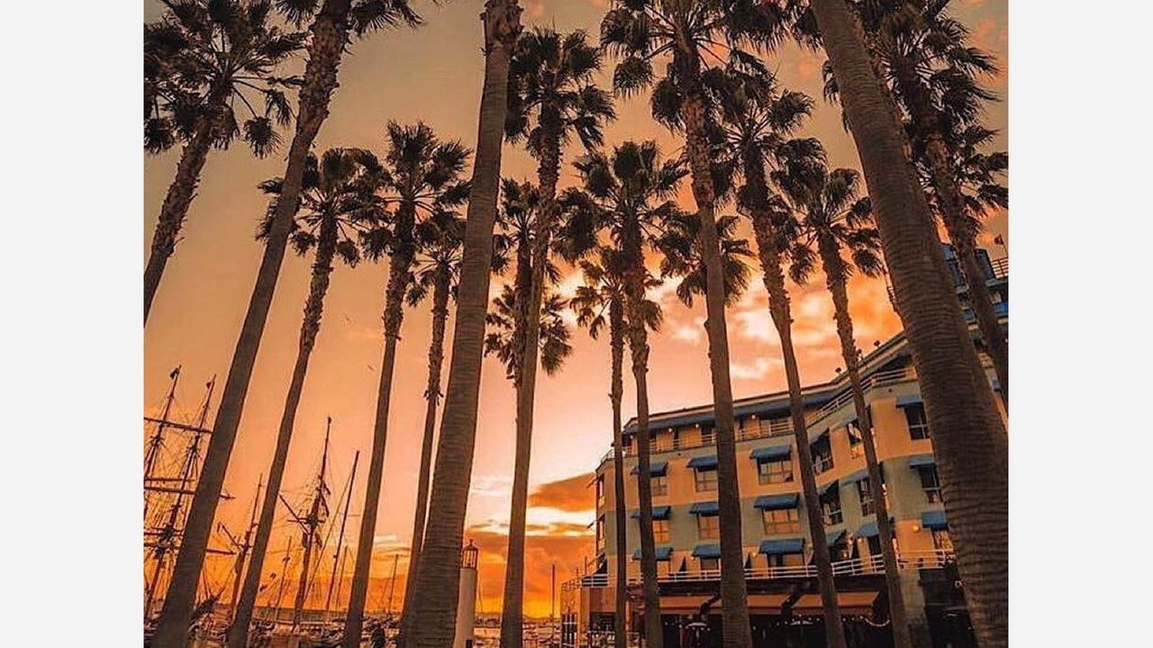 Jack London Square I Photo: Facebook