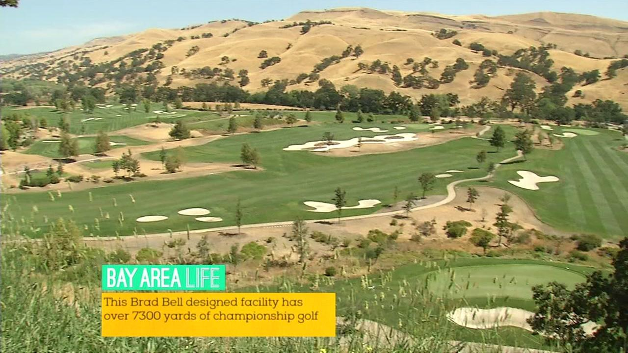Bay Area LIFE: Discover the ultimate golfing experience