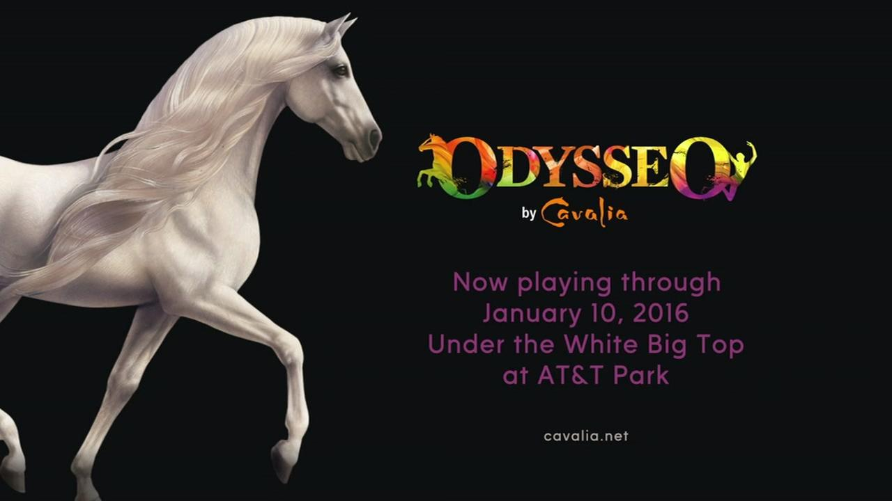 Watch Odysseeo by Cavalia