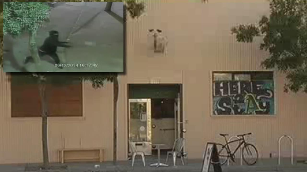 vandals throwing large rocks at Kilovolt Coffee