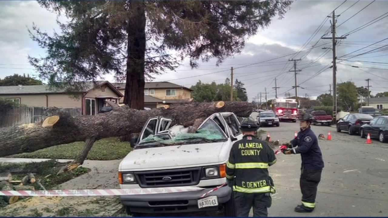 A big oak gave way and landed on a van used to transport special needs kids in Hayward, Calif. on Sunday, December 13, 2015.