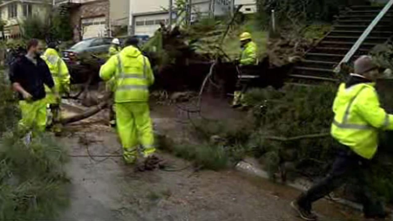 Crews try to remove fallen trees in Belmont, Calif., after a heavy storm on Tuesday, January 19, 2016.KGO-TV