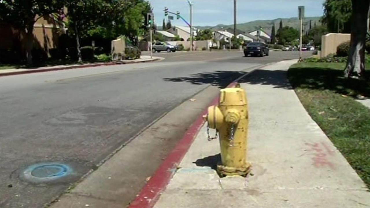 This image shows a fire hydrant in San Jose, Calif. April 20, 2016.